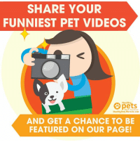 Got a goofy pet? Drop a video of them in the comments section! 😃: SHARE YOUR  FUNNIEST PET VIDEOS  pets  Healthy  With Dr  HealthyPets.Mercola.com  AND GET A CHANCE TO BE  FEATURED ON OUR PAGE! Got a goofy pet? Drop a video of them in the comments section! 😃