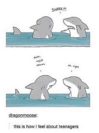 Dude, Shark, and How: SHARK!!!  dude.  Cna.ks  oh ig  dragonmoose:  this is how i feel about teenagers