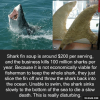 Dank, 🤖, and Deaths: Shark fin soup is around $200 per serving,  and the business kills 100 million sharks per  year. Because it is not economically viable for  fisherman to keep the whole shark, they just  slice the fin off and throw the shark back into  the ocean. Unable to swim, the shark sinks  slowly to the bottom of the sea to die a slow  death. This is really disturbing.  VIA 9GAG.COM Faith in humanity: lost. http://9gag.com/gag/aA1zGR0?ref=fbp