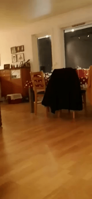 sharkboyalan:  a-singing-dragonfly:  thecutestcatever:  thenatsdorf: Boy reunites with lost cat after seven months apart.   OH MY GOSH THE CAT IS GIVING HIM KISSES I CAN'T  Im crying : sharkboyalan:  a-singing-dragonfly:  thecutestcatever:  thenatsdorf: Boy reunites with lost cat after seven months apart.   OH MY GOSH THE CAT IS GIVING HIM KISSES I CAN'T  Im crying