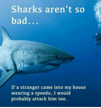 Bad, Memes, and My House: Sharks aren't so  bad  If a stranger came into my house  wearing a speedo, I would  probably attack him too. Shark's aren't so bad.
