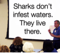 Memes, Live, and Sharks: SharKs don't  infest waters.  They live  there. https://t.co/SuSe6HypUE