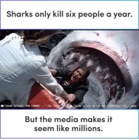 "Memes, Shark, and Common: Sharks only kill six people a year.  ""SHARK ATTACKS: HOW COMMON  "" USA TODAY 201  ""SHARK ATTACK IN THE MEDITERRANEAN,"" RTL (2004)  But the media makes if  seem like millions We shouldn't be afraid of sharks."