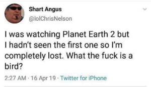 Why does it fly? via /r/memes https://ift.tt/35w2j4z: Shart Angus  @lolChrisNelson  I was watching Planet Earth 2 but  I hadn't seen the first one so Im  completely lost. What the fuck is a  bird?  2:27 AM 16 Apr 19 Twitter for iPhone Why does it fly? via /r/memes https://ift.tt/35w2j4z