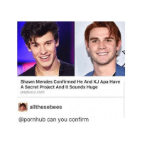 Pornhub, Grindr, and Porno: Shawn Mendes Confirmed He And KJ Apa Have  A Secret Project And It Sounds Huge  popbuzz.com  allthesebees  @pornhub can you confirm Meanwhile, the porno @drinksforgayz and I made still has 0 views 😣