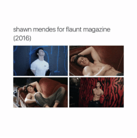 Girl Memes, Magazine, and Flaunt Magazine: Shawn mendes for flaunt magazine  (2016) Forever my daddy