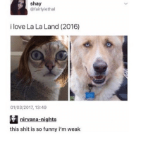 Funny, Lmao, and Love: shay  @fairlyiethal  i love La La Land (2016)  01/03/2017, 13:49  nirvana-nights  this shit is so funny i m weak LMAO I'm sorry u had to see this -C