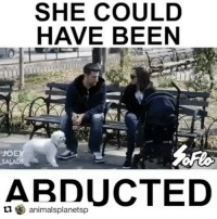 @Regrann from @d.amethyst_17 - SHARE THIS VIDEO ! IF YOU HAVE KIDS, THIS SHOULD WAKE YOU UP. Kids are suckers for animals, and won't even give it second thought to not talk to a stranger with a puppy. They have to see for themselves. Talk to your kids - show them this important video. Repost @animalsplanetsp with @repostapp ・・・ Repost @soflo ・・・ THIS NEEDS TO BE PASSED AROUND⠀ 😭😭😭😭😭😭😭😭😭😭😭😭😭😭😭⠀ With: @joeysalads - regrann: SHE COULD  HAVE BEEN  animalsplanetsp @Regrann from @d.amethyst_17 - SHARE THIS VIDEO ! IF YOU HAVE KIDS, THIS SHOULD WAKE YOU UP. Kids are suckers for animals, and won't even give it second thought to not talk to a stranger with a puppy. They have to see for themselves. Talk to your kids - show them this important video. Repost @animalsplanetsp with @repostapp ・・・ Repost @soflo ・・・ THIS NEEDS TO BE PASSED AROUND⠀ 😭😭😭😭😭😭😭😭😭😭😭😭😭😭😭⠀ With: @joeysalads - regrann