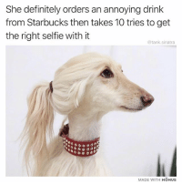 Definitely, Funny, and Selfie: She definitely orders an annoying drink  from Starbucks then takes 10 tries to get  the right selfie with it  @tank.sinatra  MADE WITH MOMUS Venti selfie