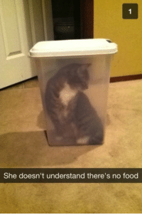 Food, She, and  No: She doesn't understand there's no food