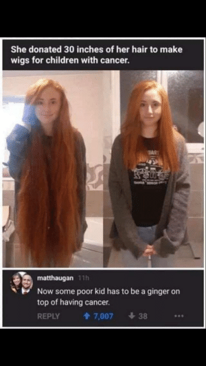 This is actually good but really offensive by ShrekMain12345 MORE MEMES: She donated 30 inches of her hair to make  wigs for children with cancer.  AS  matthaugan 11h  Now some poor kid has to be a ginger on  top of having  cancer.  REPLY  7,007  38 This is actually good but really offensive by ShrekMain12345 MORE MEMES