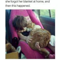 Funny, Ted, and Home: she forgot her blanket at home, and  then this happened. Cuteness overload (@hilarious.ted)