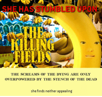 "Reddit, Fate, and Com: SHE HAS ST  THE SCREAMS OF THE DYING ARE ONLY  OVERPOWERED BY THE STENCH OF THE DEAD  she finds neither appealing <p>[<a href=""https://www.reddit.com/r/surrealmemes/comments/7tsegd/no_%F0%9D%93%91%F0%9D%93%90%F0%9D%93%9D%F0%9D%93%90%F0%9D%93%9D_de%D1%95erves_%D1%95%CF%85c%D0%BD_a_fate/"">Src</a>]</p>"