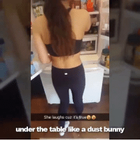 Bunnies, Dank, and 🤖: She laughs cuz it's trueee  under the table likea dust bunny She hides food in the strangest places. (By Cot Dammit Elizabeth)