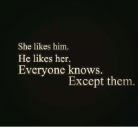 Memes, 🤖, and Her: She likes him.  He likes her.  Everyone knows  Except them
