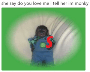me_irl: she say do you love me i tell her im monky me_irl