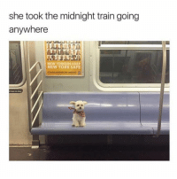 JUST A CITY BOY, BORN AND RAISED IN SOUTH DETROIT (@newyorkdog): she took the midnight train going  anvwhere  NEW YORKERS KEEP  NEW YORK SAFE JUST A CITY BOY, BORN AND RAISED IN SOUTH DETROIT (@newyorkdog)