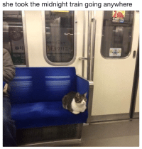 Train, Midnight, and She: she took the midnight train going anywhere