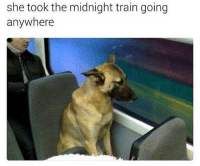 Just a small town pup: she took the midnight train going  anywhere Just a small town pup