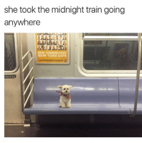 Lean, Memes, and New York: she took the midnight train going  anywhere  NEW YORKERS KEEP  NEW YORK SAFE  t lean on door  F2 😍😍