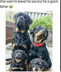 😂😂: She want to leave his ass but he a good  father 😂😂