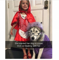 Memes, Butterfly, and Antisocial: She wanted her dog to come  trick-or-treating with her Follow my other accounts @antisocialtv @lola_the_ladypug @x__antisocial_butterfly__x