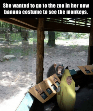 Life, Tumblr, and Banana: She wanted to go to the zoo in her nevw  banana costume to see the monkeys. epicjohndoe:  This Is How I Should Live My Life