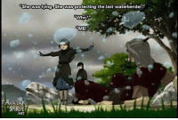 Animals, Memes, and Animal: She was lying. She was protecting the last waterbender  Who?  ME  AVATAR  SPIRIT  .NET Remember?  ~ Anime & Cartoon Universe