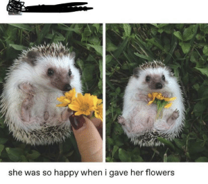 Queen, Flower, and Flowers: she was so happy when i gave her flowers  twitte A flower queen