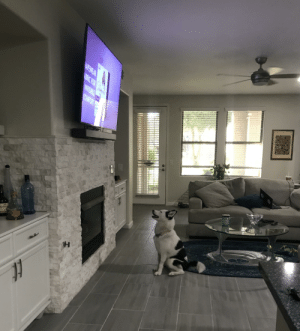 She was watching the meerkats on Discovery Channel and couldn't figure out where they went at the commercial.: She was watching the meerkats on Discovery Channel and couldn't figure out where they went at the commercial.