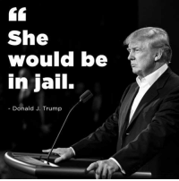 Jail, Memes, and Trump: She  Would be  in jail.  Donald J. Trump Now that is a message we can get behind.  Cold Dead Hands