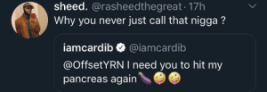 Dank, Memes, and Target: sheed. @rasheedthegreat 17h  Why you never just call that nigga?  iamcardib @iamcardib  @OffsetYRN I need you to hit my  pancreas again She gotta let everyone know the business by KingMjolnir MORE MEMES