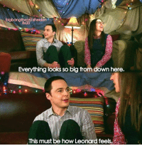 Sheldonisms: sheldon  8x20  Everything looks so big from down here.  This must  how Leonard feels,