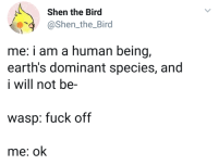 meirl: Shen the Bird  @Shen_the_Bird  4  me: i am a human being  earth's dominant species, and  i will not be-  wasp: fuck off  me: ok meirl