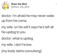 Doctor, What Is, and Wife: Shen the Bird  @Shen_the_Bird  doctor: i'm afraid he may never wake  up from his coma  my wife: on his will it says he's left all  his updog to you  doctor: what is updog  my wife: i don't know  [my body starts convulsing]