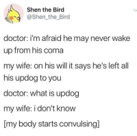 Doctor, The Office, and Michael: Shen the Bird  @Shen_the_Bird  doctor: i'm afraid he may never wake  up from his coma  my wife: on his will it says he's left all  his updog to you  doctor: what is updog  my wife: i don't know  [my body starts convulsing]