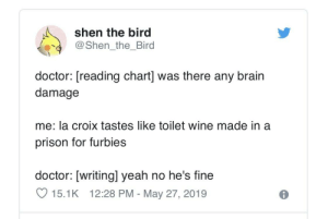 I mean he isn't wrong: shen the bird  @Shen_the_Bird  doctor: [reading chart] was there any brain  damage  me: la croix tastes like toilet wine made in a  prison for furbies  doctor: [writingl yeah no he's fine  15.1K 12:28 PM - May 27, 2019 I mean he isn't wrong