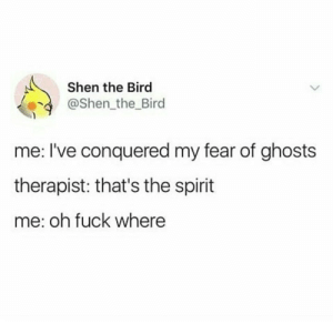 Fuck, Spirit, and Fear: Shen the Bird  @Shen the Bird  me: I've conquered my fear of ghosts  therapist: that's the spirit  me: oh fuck where meirl