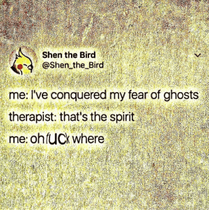 Fear, Shen, and Ghosts: Shen the Bird  @Shen the Bird  me: I've conquered my fear of ghosts  therapist: that's the soirit  me: ohfUCk where 🅱️🅰️M🅱️🅾️🅾️ZLED 😂👌👌