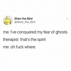 Memes, Fuck, and Spirit: Shen the Bird  @Shen_the Bird  me: I've conquered my fear of ghosts  therapist: that's the spirit  me: oh fuck where Spooky. via /r/memes https://ift.tt/2IFDOao