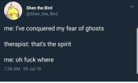 meirl: Shen the Bird  @Shen_the_Bird  me: l've conquered my fear of ghosts  therapist: that's the spirit  me: oh fuck where  7:36 AM 09 Jul 18 meirl