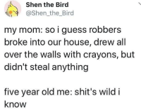 I guess so.: Shen the Bird  @Shen_the_Bird  my mom: so i guess robbers  broke into our house, drew all  over the walls with crayons, but  didn't steal anything  five year old me: shit's wild i  know I guess so.