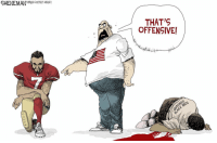 America in a picture: SHENEMAN  TRIBUNE CONTENT AGENCY  THAT'S  OFFENSIVE! America in a picture