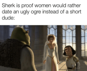 A sad reality by Bronze_Mace MORE MEMES: Sherk is proof women would rather  date an ugly ogre instead of a short  dude: A sad reality by Bronze_Mace MORE MEMES