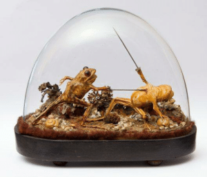 Anaconda, Fucking, and Internet: shermansky: kineticpenguin:  we-did-an-internet:  arcaneimages:  This taxidermy was found inside a late 19th-century French mansion which has been sealed up for more than 100 years. Via National Geographic.  Good to know people were just as fucking weird before the internet.  ancient frog memes  et tu, dat boi?