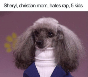 Funny, Memes, and Rap: Sheryl, christian mom, hates rap, 5 kids check our mugs, shirts, wine tumblers We make dirty, funny ~ Unlawfulthreads.com