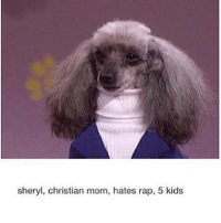 Memes, 🤖, and Fox: sheryl, christian mom, hates rap, 5 kids Watches Fox News on top volume, definitely ends up with a gay son. (@thirstyspice)