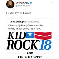 Plot twist: @sherylcrow is running for congress 🇺🇸 imwithher: Sheryl Crow  @SherylCrow  Dude. I'm still alive.  Tuna Ketchup @TunaCatsup  Oh man, @SherylCrow must be  rolling in her grave right now...  ROCK18  FOR Plot twist: @sherylcrow is running for congress 🇺🇸 imwithher
