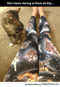 Tumblr, Blog, and Been: She's been staring at them all day...  you should probably go to TheMetaPicture.com epicjohndoe:  Why Are You Wearing My People, Human?