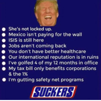 Isis, Jobs, and Mexico: She's not locked up.  Mexico isn't paying for the wall  ISIS is still here  Jobs aren't coming back  You don't have better healthcare  Our international reputation is in ruins  . I've golfed 4 of my 12 months in office  . My tax bill only benefits corporations  & the 1%  I'm gutting safety net programs  SUCKERS